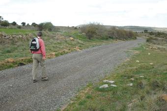Camino de Aguilar de Anguita