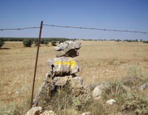 Camino de Villaescusa de Palositos
