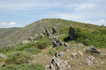 Camino de la sierra