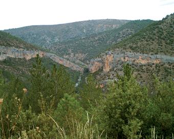 En las cercanías de Huertapelayo