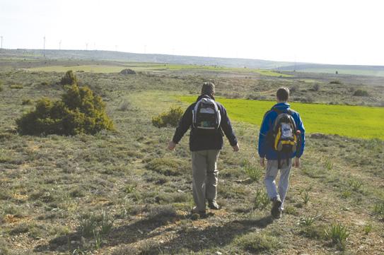 Camino de Maranchón
