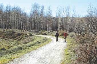 Por los caminos de Medranda