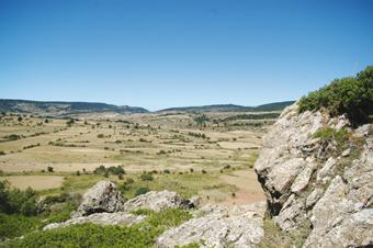Camino del Alto de Orea