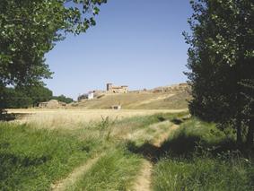 Camino de Pradilla