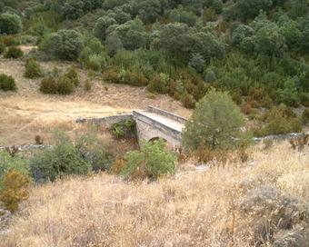 Puente de Tagüenza