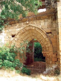 Ruinas del Monasterio de Bonaval