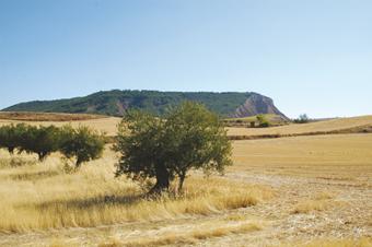 Paisaje en Taracena