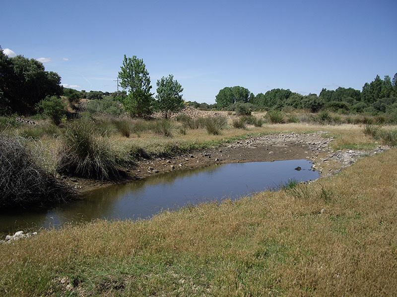 Arroyo de la Galga