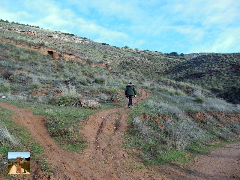 Elegimos la senda para subir hasta el cerro