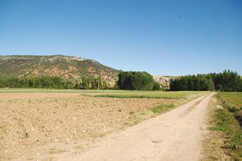 Camino de Castejón de Henares