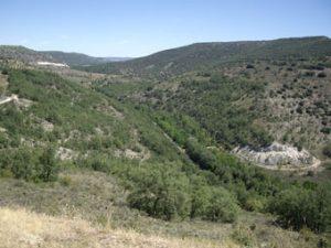 Valle del Tajuña