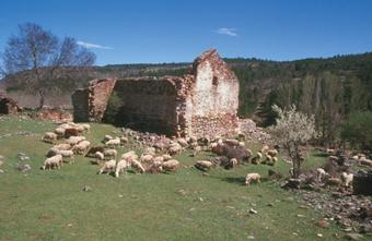 Ruinas de Sacedoncillo