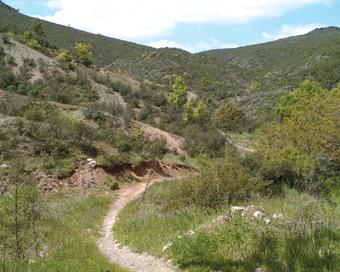 Tortuero.- Camino de Alpedrete
