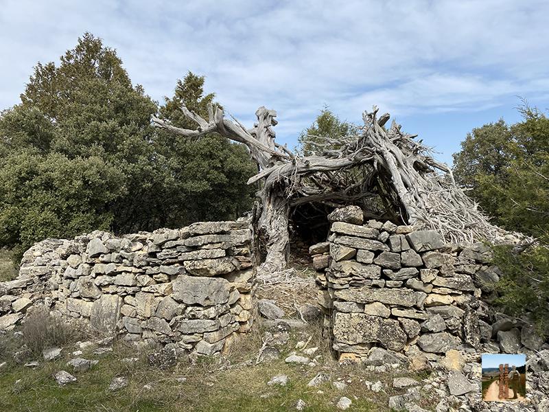 Chozón del Cerro de la Cruz